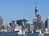 Downtown Auckland Skyline NZ