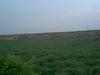 Dried Badkhal Lake