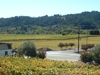 Dry Creek  California
