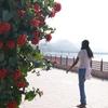Ana Sagar Visitor