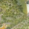 Painting Depicting Royal Hunt - City Palace - Udaipur