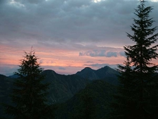 Trees - Mountains & Magnificent Sky