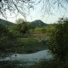 Outskirts Of Ranakpur