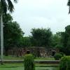 Humayun's Tomb Garden & Palms