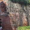 Original Wall Of Red Bricks