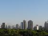 Sao Paulo Vertical Areas & Low Houses