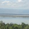 Shallow Soda Lake Elementaita