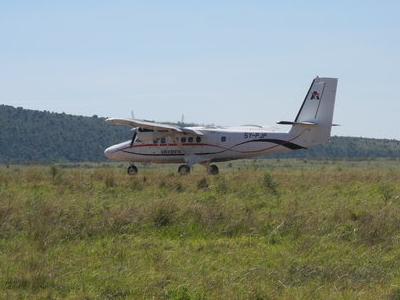 Bringing In Masai Mara Visitors