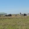 Keekorok Airport - Kenya