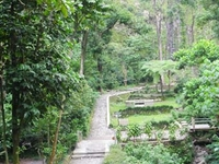 Merapi Lookout Trail