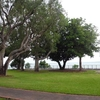 Parque del Bicentenario
