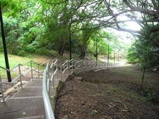 Damoe Ra Path - Darwin - Australia