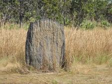 Interesting Dark Mound Formation