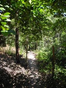 Shady Creek Trail - Litchfield NP