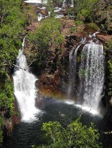 Bifurcating Twin Falls