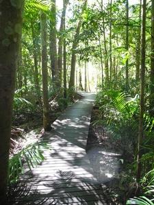 Wangi Loop Trail View