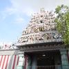 Temple Shikhara & Entrance