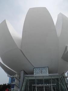 Lotus Bowl Ceiling