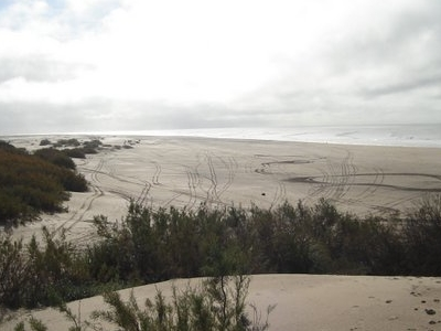 Dunes On The San Clemente Del Tuyu Shore.