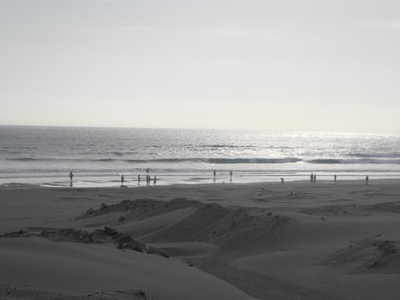 Dunes Invading Tracks
