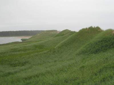 Dunes On  P E I
