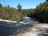 DuPont State Recreational Forest