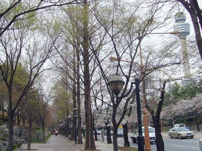Duryu Park - View