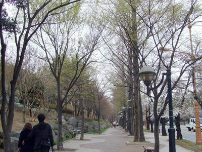 Duryu Park