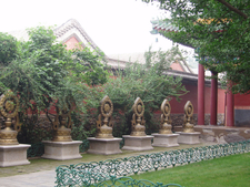 A Courtyard Of Puning Temple