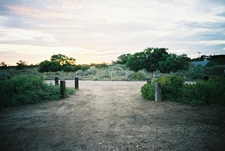 Dalhousie Springs