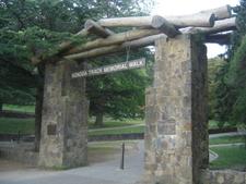 Ferntree Gully Forest