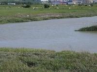 Río Cray