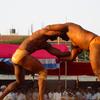 Indian Wrestlers Or Pehlwan
