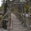 Dionicio Rodriguez Bridge In Brackenridge Park