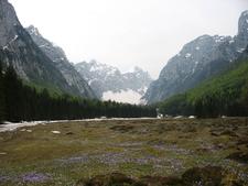 Dolina Krma Julijske Alpe Slovenia