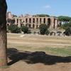 Domus Flavia And Circo Massimo