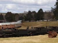 Dorrigo Steam Railway y el museo