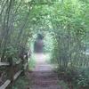 Downe Bank Path