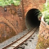Driving Creek Railway Brick Tunnel Portal