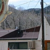 Rustic Resort In The Upper Poudre Canyon