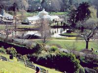 Dunedin Botanic Gardens