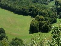 Parque Nacional de Podyji