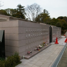 View Of Aoyama Cemetery