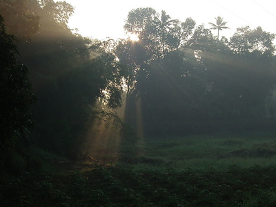 Early Morning In Kottayam