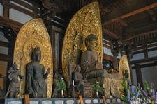 Eastern Golden Hall Kofukuji Inside