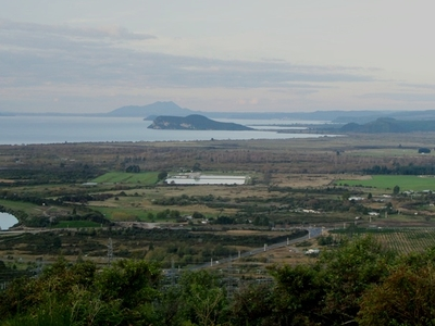 Eastern Lake Taupo, Turangi To Taupo