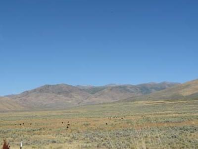 East Humboldt Range View