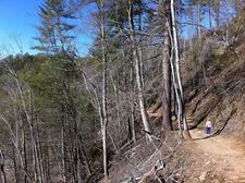 East Webber Trail 289 - Tonto National Forest - Arizona - USA