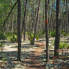 Eaton Creek North Trail
