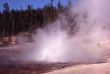 Echinus Geyser - Yellowstone - USA